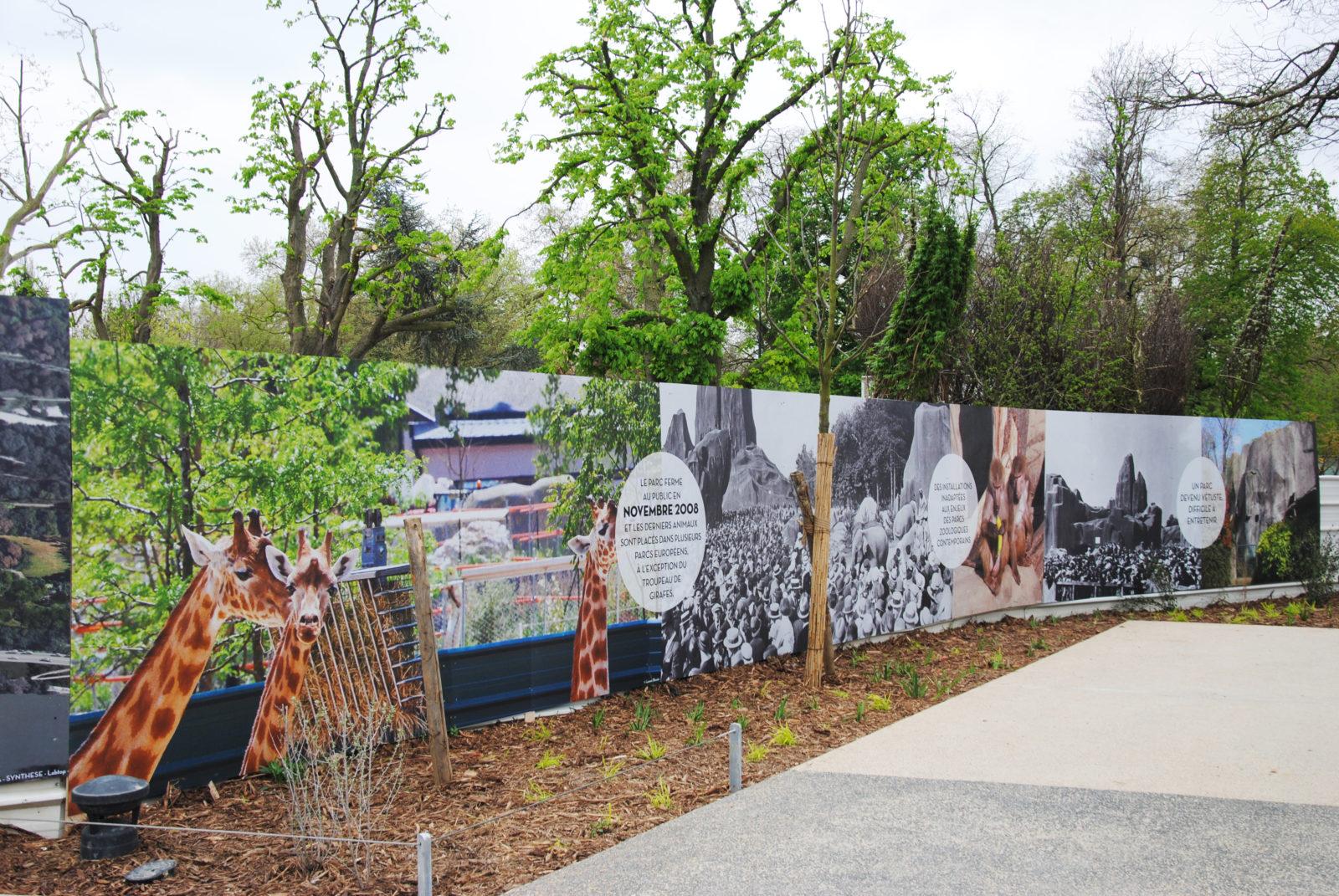 zoo-paris-palissade-chantier-communication